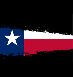 texas flag splash vector image