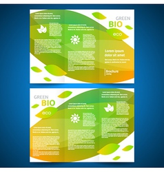 brochure design bio eco green leaf nature vector image
