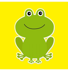 Cute green cartoon frog White background vector image