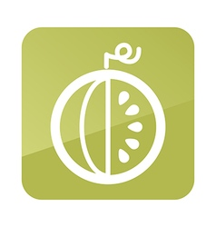 Watermelon outline icon fruit vector