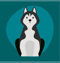 funny cartoon huskies dog character black white vector image