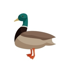 Duck icon cartoon style vector