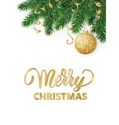 greeting card with fir tree branches hanging vector image