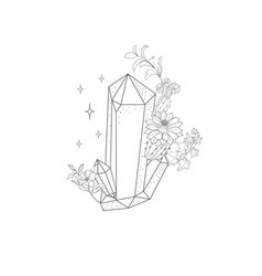 hand drawn plant branches and crystal greenery vector image