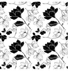 Magnolia floral botanical flowers black vector