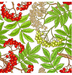 Rowan branch pattern vector