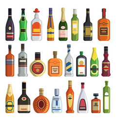 different alcoholic drinks in bottles vector image