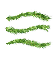 Christmas tree decorations fir branches design vector
