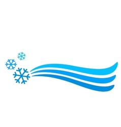 Snowflakes and background vector