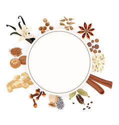 backing spices big set vector image