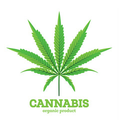 cannabis or marijuana leaf emblem isolated on vector image