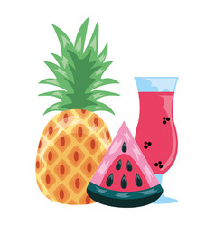 watermelon pineapple juice tropical fruit vector image