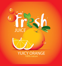 banner for fresh orange juice with fruit vector image