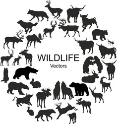 collection of silhouettes of different species of vector image