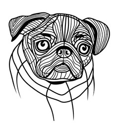 Dog pug head vector image