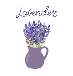 lavender flowers in a vase lettering lavender vector image