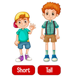 Opposite adjectives words with short and tall vector