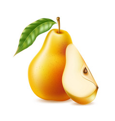 Realistic yellow ripe pear healthy food vector