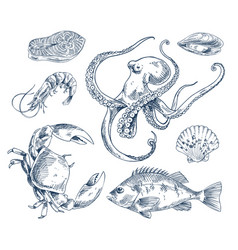 Seafood sketch monochrome poster vector