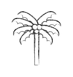 Sketch draw beach palm cartoon vector