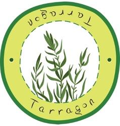 Tarragon vector