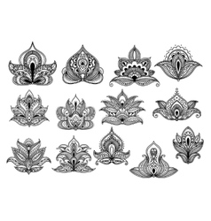 Large set of ornate floral paisley motifs vector image