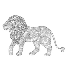 Adult coloring page for antistress with lion vector
