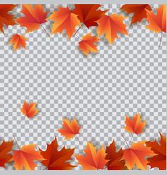 autumn leaves bright colourful autumn oak leaves vector image