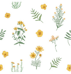 beautiful floral pattern with wild blooming vector image