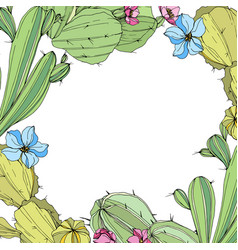 Cacti flower wild spring leaf wildflower vector