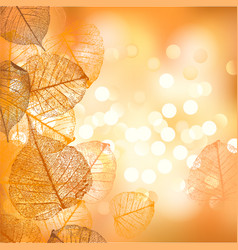 festive background autumn leaves vector image