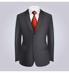 Male Clothing Dark Striped Suit with Red Tie vector image
