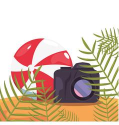 Photography camera beach ball exotic branch summer vector