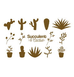 Succulent and cactus desert plants vector