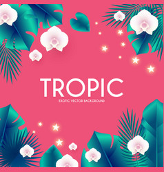 tropic summer exotic design with palm leaves and vector image