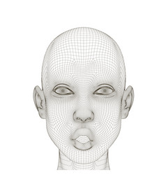 wireframe of a girl head with a surprised vector image