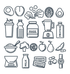 healthy lifestyle and fitness food nutrition vector image vector image