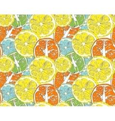 Hello Summer orange lemon vector image vector image