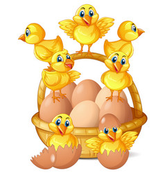 Little chicks and eggs in basket vector