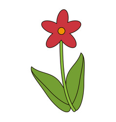 cute flower natural floral vector image
