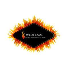 Fire design collection vector