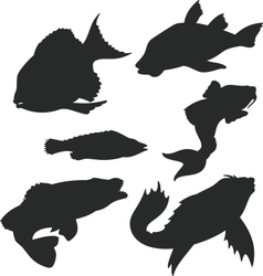 Fish shiluettes vector