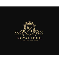 Initial ao letter luxurious brand logo template vector