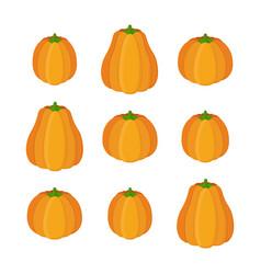 orange pumpkin set halloween vegetable vector image