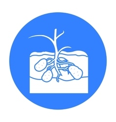 Potato icon black Single plant icon from the big vector