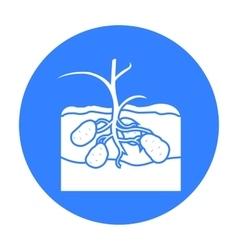 Potato icon black single plant icon from the big vector