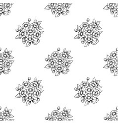 seamless outline daisy flowers background vector image
