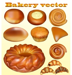 Set of fresh baked blusher isolated vector