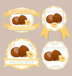 the theme hazelnut vector image