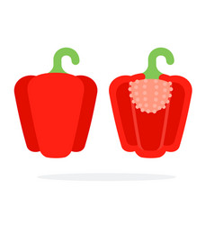 Whole red paprika with a stem and paprika in a vector